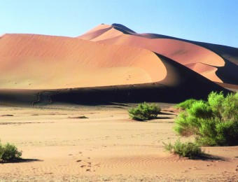 Mali-Landschaft